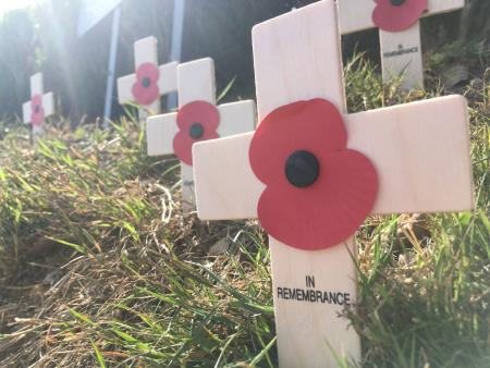 Poppy garden tribute for First World War centenary